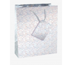 County Holographic Gift Bag - Medium - 17.5cm x 22.5cm x 10